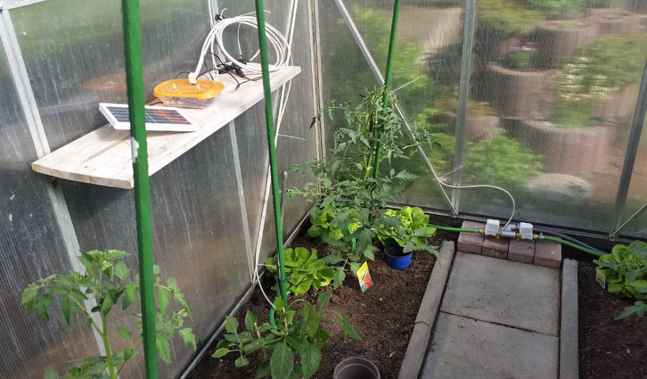 raspberry pi bewässerung
